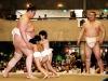 わんぱく相撲トーナメント