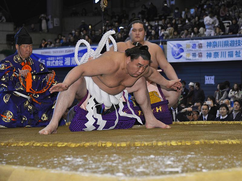 見よ、横綱日馬富士の土俵入りを!