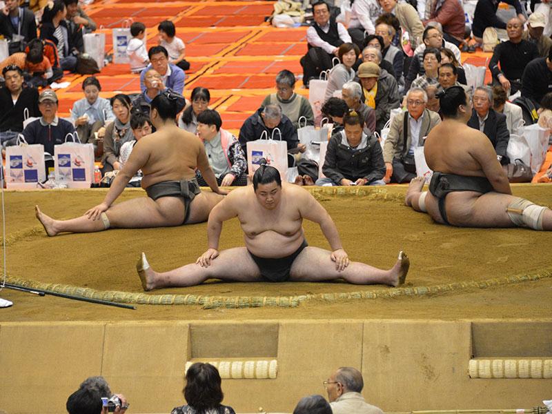 股割は相撲の基本です。