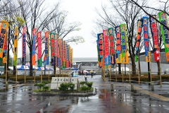 平成29年第25回大相撲藤沢場所。