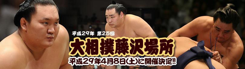 平成29年第25回大相撲藤沢場所